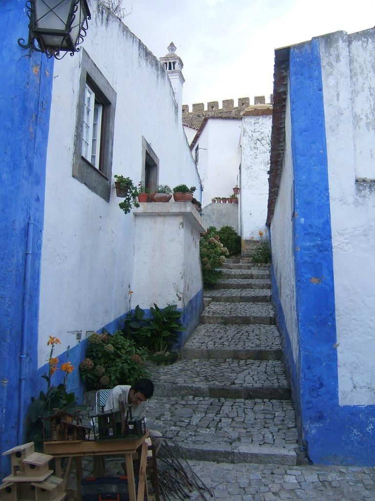 apprendre le portugais : jusqu'où voulez-vous aller ?