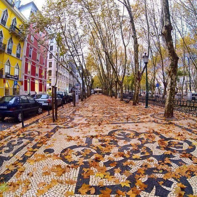 podcast-portugais-automne-outono